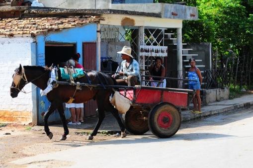 """At arabaları ve arabacıları """"yavaş"""" kentin ayrılmaz bir parçası.."""