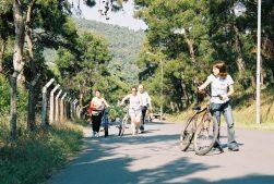 2004-06-buyukadada-bisiklet-turu1
