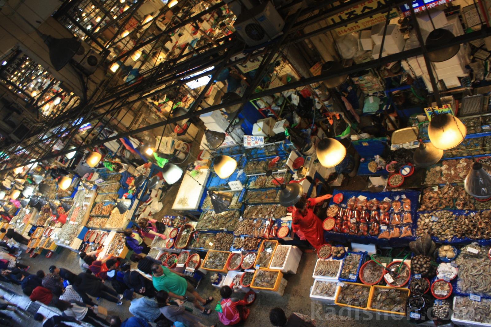 Güney Kore balık pazarı