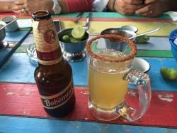 Meksika birası