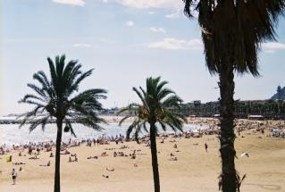 Barcelona şehir plajı